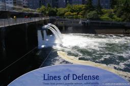 Lines that protect fish at the dam at Hiram Chittenden Locks.jpg