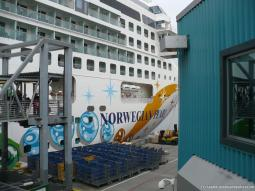 View of the Norwegian Pearl from the Seattle gangway.jpg