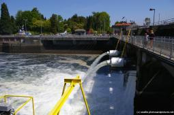 Hiram Chittenden Locks Pictures and Photos