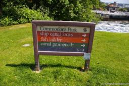 Commodore Park sign in Seattle indicating ship canal locks fish ladder and canal promenade.jpg